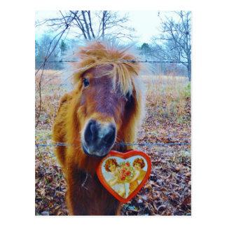 Carte Postale Cheval de coeur de Valentine