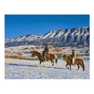 Carte Postale Cheval d'équitation de cowboy et de cow-girl par