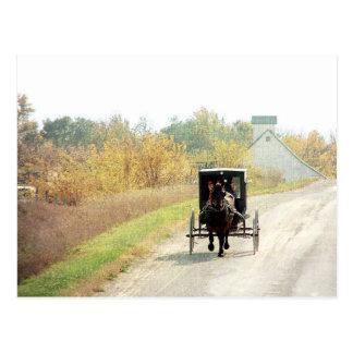 Carte Postale Cheval et boguet amish d'automne