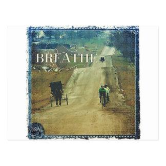 Carte Postale Cheval et boguet et bicyclettes