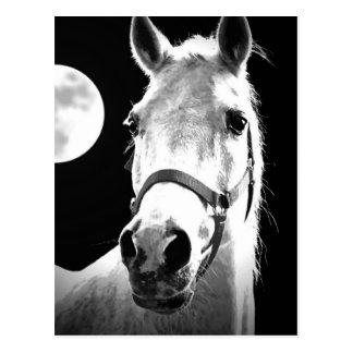 Carte Postale Cheval et lune