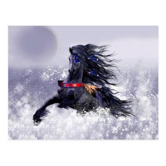 Carte Postale Cheval indien d'étalon majestueux bleu noir dans