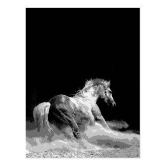 Carte Postale Cheval noir et blanc dans l'action