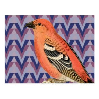 Carte Postale Chevron et oiseau rose vintage