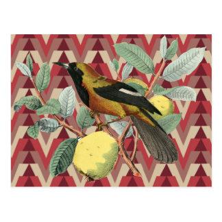 Carte Postale Chevron et oiseau vintage