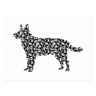 Carte Postale Chien australien de bétail