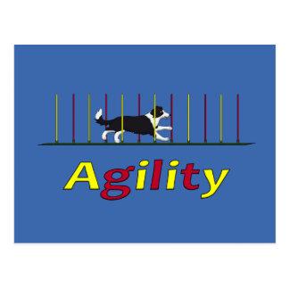 Carte Postale Chien d'agilité
