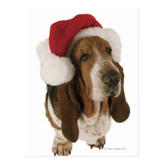 Carte Postale Chien de basset dans le casquette de Père Noël