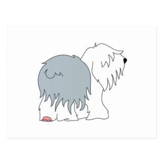 Carte Postale Chien de berger de queue écourtée