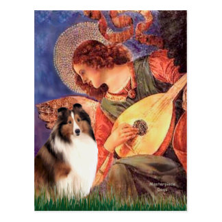Carte Postale Chien de berger de Shetland 7 - ange de mandoline