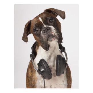Carte Postale chien de boxeur avec des écouteurs