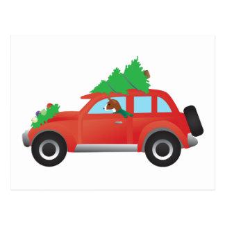 Carte Postale Chien de chasse de Basenji conduisant la voiture