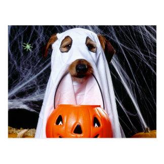 Carte Postale Chien de fantôme - chien drôle - poursuivez