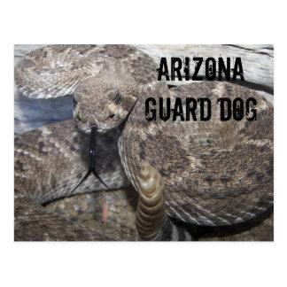 Carte Postale Chien de garde de l'Arizona