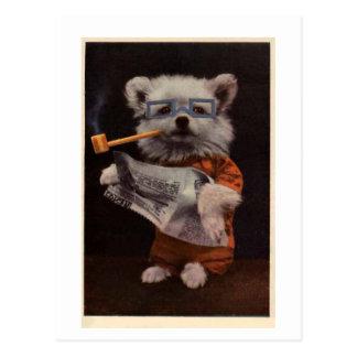 """Carte Postale Chien """"de la lecture de Bob"""" - dans le costume"""