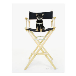 Carte Postale Chien de Shiba Inu sur la chaise du directeur