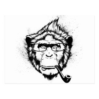 Carte Postale Chimpanzé caractéristique