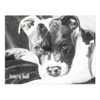 Carte Postale Chiot de Pitbull au crayon 4 par Jacob Grimm