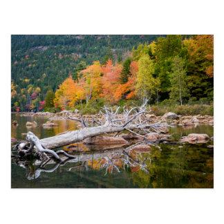 Carte Postale Chute du Maine