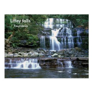 Carte Postale Chutes de Liffey, Tasmanie