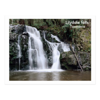 Carte Postale Chutes de Lilydale, Tasmanie
