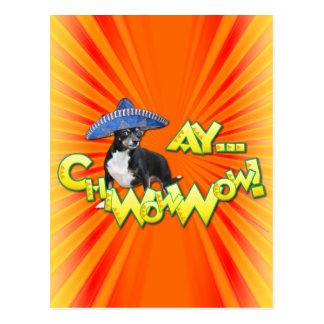 Carte Postale Cinco De Mayo - Ay ChWowWow ! - Chiwawa