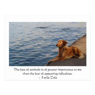 Carte Postale Citation de droits des animaux d'Emile Zola, dire