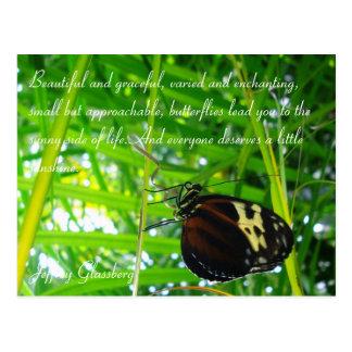 Carte postale/citation de papillon