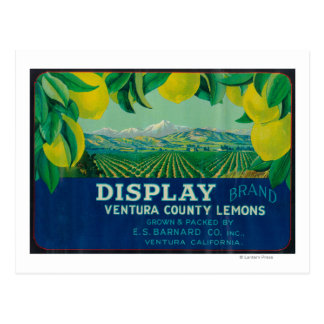 Carte Postale Citron LabelVentura, CA d'affichage
