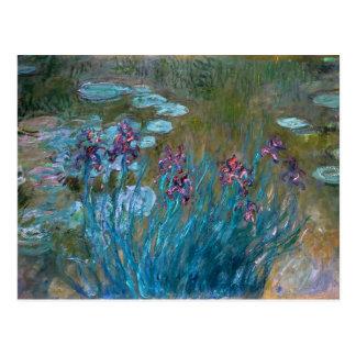 Carte Postale Claude Monet : Iris et nénuphars