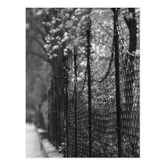 Carte postale clôturée de jardin
