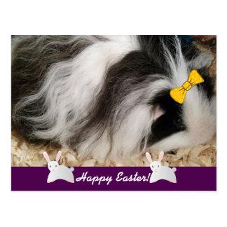 Carte Postale Cobaye heureux de Pâques