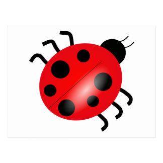 Carte Postale Coccinelle - Ladybird