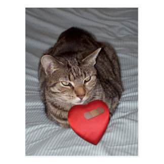 Carte Postale Coeur de chat Bandaid