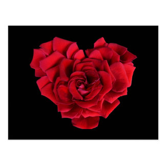 Carte Postale Coeur de rose rouge