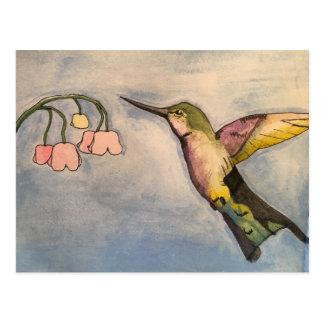 Carte Postale Colibri