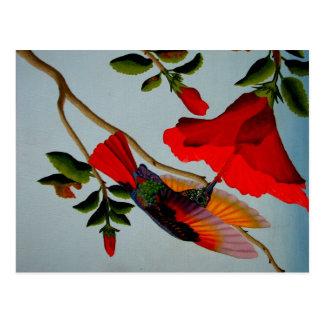 Carte Postale Colibri magnifique