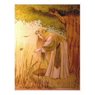 """Carte postale collectable de la sorcière verte"" Carte Postale"