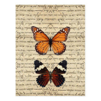 Carte Postale Collection vintage de papillons