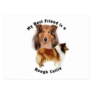 Carte Postale Colley rugueux de meilleur ami