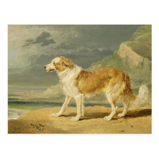 Carte Postale colley Rugueux-enduit, 1809 (huile à bord)