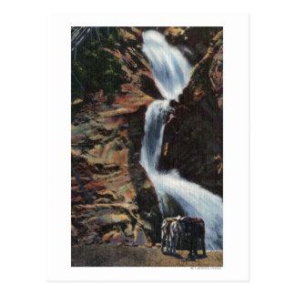 Carte Postale Colorado Springs, Co - abaissez trois de l'automne
