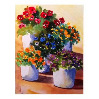 Carte postale colorée de pots de fleur