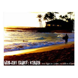 Carte Postale Comme voyager avec 1 surfer par Kauai