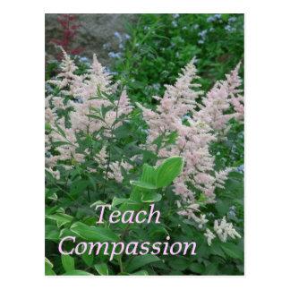 Carte Postale Compassion