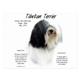 Carte Postale Conception d'histoire de Terrier tibétain