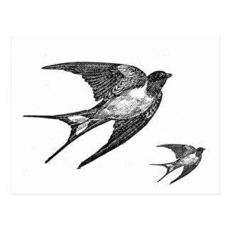 Carte Postale Conception noire vintage d'hirondelle