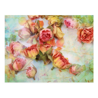 Carte Postale Conception vintage de roses secs
