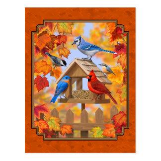 Carte Postale Conducteur d'oiseau recueillant l'orange d'automne