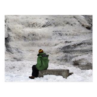 Carte postale congelée d'automnes de babeurre de